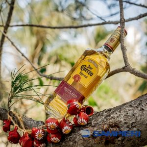Tequila Jose Cuervo Especial Reposado 695 ml.