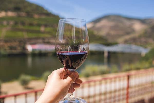 vino tinto guia de vino